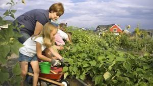 15-dintre-subventii-vor-fi-dedicate-exclusiv-micilor-fermieri-3287
